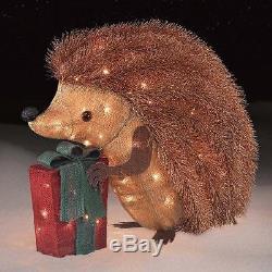 Lighted Outdoor Christmas Decoration Hedgehog 24 Indoor Holiday Yard Xmas Decor