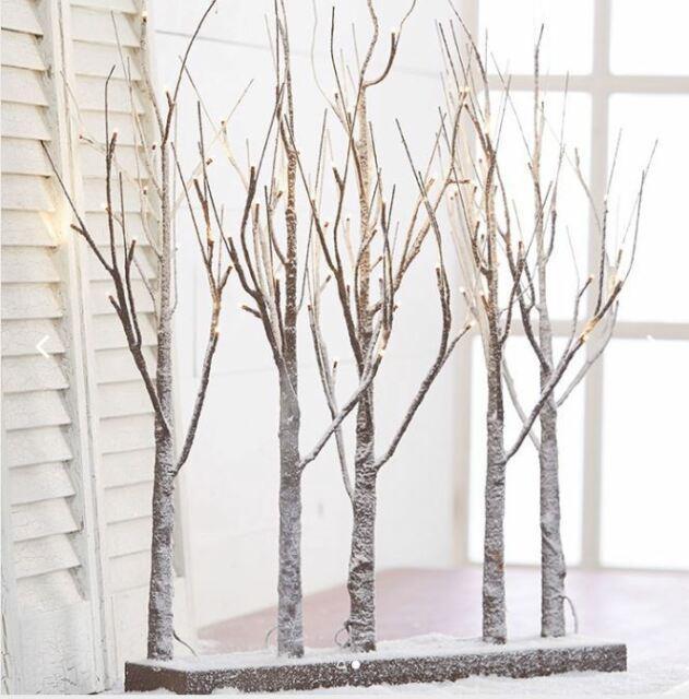 Raz Imports 30 Lighted Birch Grove Trees White Led Lights Christmas New 3800926