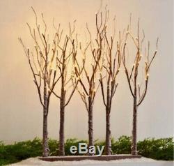 Raz Imports 30 CHRISTMAS LIGHTED TREE GROVE 3800926 NEW! SuPeR PReTTy